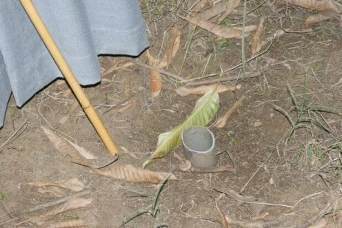 In the mango orchard: A shot hole pipe Dana Gas left protruding from the ground