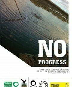 No Progress - an evaluation of the implementation of UNEP's assessment of Ogoniland 3 years on